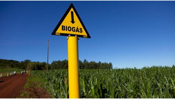 Immagine: Consorzio Biogas: 'Governo liberi le potenzialità del più grande giacimento di energia verde italiana'