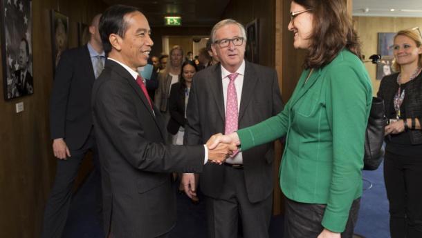 Immagine: UE, decisione storica: 'Biodiesel da olio di palma insostenibile'. Ma le eccezioni rovinano tutto