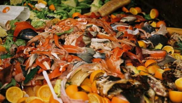 Immagine: Puglia, protocollo d'intesa per l'organico: '100 euro a tonnellata'