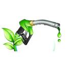 Immagine: CONVERGE, il progetto europeo per il biodiesel da biomassa coordinato dal Politecnico di Milano