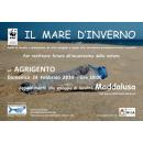 Immagine: Wwf, domenica 24 il tour 'Spiagge plastic free' fa tappa ad Agrigento