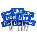 Immagine: 'I followers su facebook sono meri osservatori', rigettato il ricorso dell'associazione contro impianto rifiuti